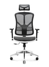 Ergonomická židle DIABLO V-BASIC: bílo-černá Diablochairs