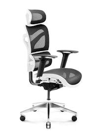 Ergonomischer Bürostuhl  DIABLO V-COMMANDER : schwarz-weiß
